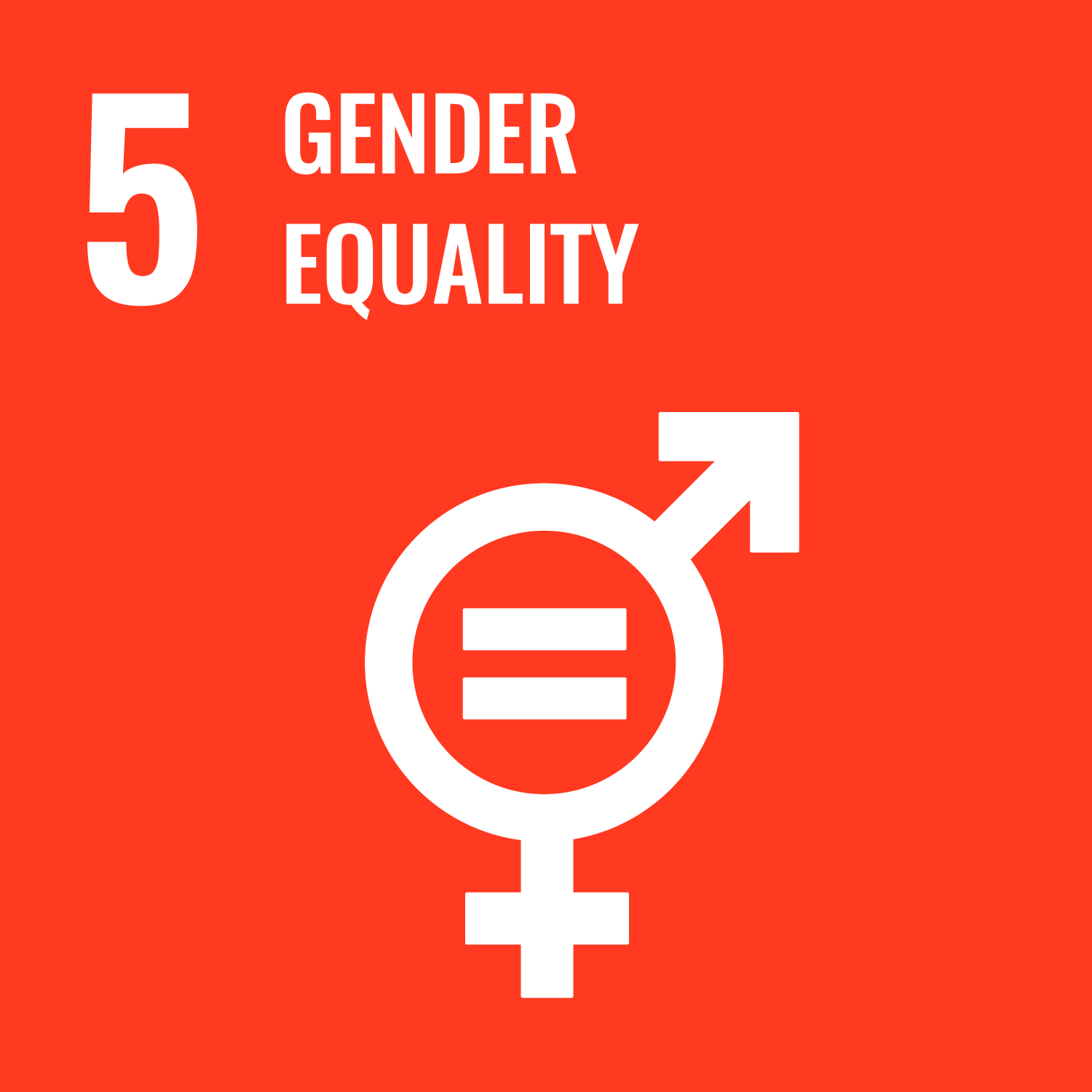 Goal number 5 of the SDGs: Gender Equality